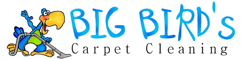 Big Birds Carpet Cleaning